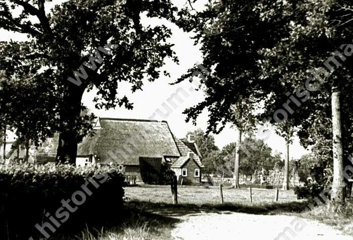 Boerderij van Frederik Boerema in 1980